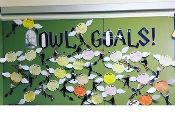 Harry Potter Goals Display