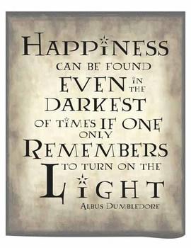 photograph regarding Harry Potter Printable Posters identify Harry Potter Poster - Gentle/Darkish
