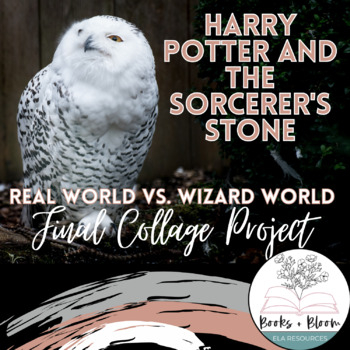 Harry Potter and the Sorcerer's Stone Final Collage Project
