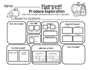 Harvest Produce Science Exploration Worksheet