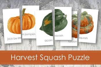 Harvest Squash Puzzles