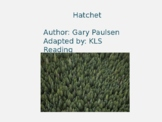 Hatchet Adapted Powerpoint - 20 Slides reviewing each chapter with pictures