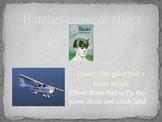 Hatchet: Cause & Effect