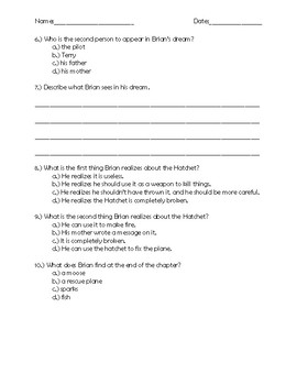 Hatchet Chapter 8 Quick Quiz