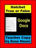 Hatchet Chapter True or False Quizzes Google Docs Teacher Edition