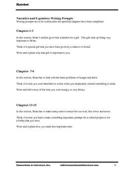 Hatchet-Reading Literature Guide