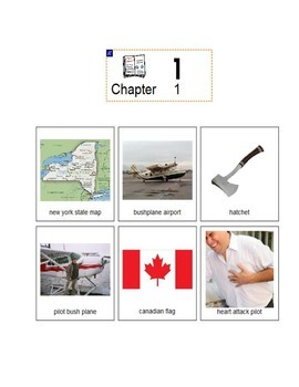 Hatchet - Gary Paulsen Adapted Book Picture Supported Text