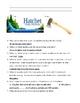 Hatchet - Gary Paulsen - novel test and answer key