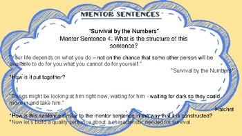 Hatchet Mentor Sentence 4