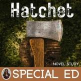 Hatchet Novel Study for Special Education