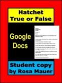 Hatchet True or False Chapter Quizzes Google Docs Student Edition