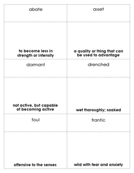 Hatchet Vocabulary Bingo