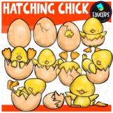 Hatching Chick Clip Art Bundle {Educlips Clipart}