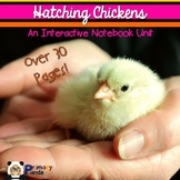 Hatching Chicken Eggs: An Interactive Notebook Unit