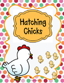 Hatching Chicks!
