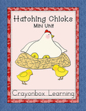 Hatching Chicks, Chickens, Biology, Distance Learning