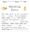 Hatching Ducks Fill In The Blank Story