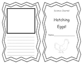 Hatching Eggs Science Journal