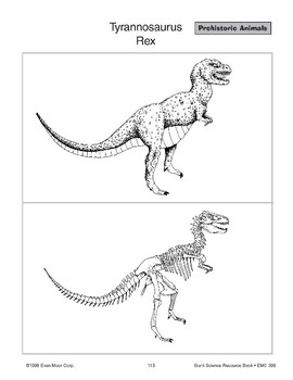 Have Dinosaurs Disappeared?