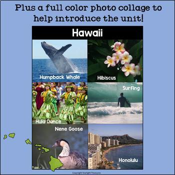 Hawaii Mini Book for Early Readers - A State Study