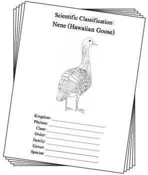 Hawaii State Bird Notebooking Set (Nene - Hawaiian Goose)