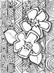 Hawaiian Life Zen Doodles