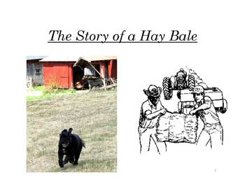 2nd Grade Farm Lesson: The Story of a Hay Bale - Complete Package