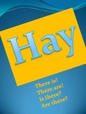 """Hay"":Spanish for  there is, there are, is there? are there?"