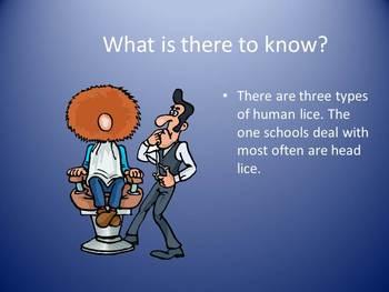 Head Lice Basics