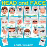 Head and face flashcards