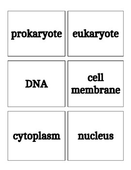 Heads Up-Cell Types & Organelles
