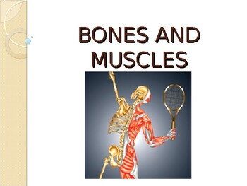 Health: 2nd-3rd Grade Health - Bones and Muscles PowerPoint