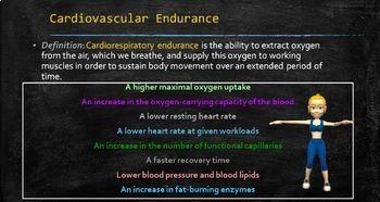 Cardiovascular Fitness- PowerPoint Presentation