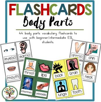 Flashcards Body Parts