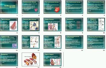 Health Curriculum Lesson Plans Part 2
