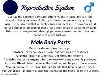 Health - Human Development and Sexual Health - Gr. 5 - Reproductive System