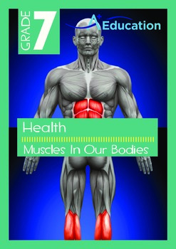 Health - Muscles In Our Bodies - Grade 7