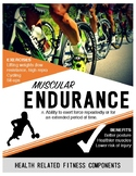 Health Related Fitness Components Posters