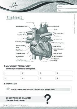 Health - The Heart - Grade 9