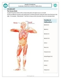 Health and Medicine (B): Naming human body parts, functions and malfunctions