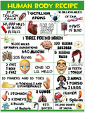 Health and Science Poster: Human Body Recipe