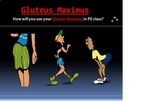 Health and Physical Education - Muscle of the Month PPT