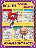 Health and Science Poster Bundle: Human Body Facts- 6 Cont