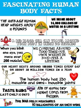 Health and Science Poster: Fascinating Human Body Facts