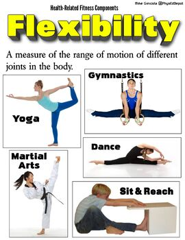 Health and Skill-Related Fitness Components Bundle - PE ...