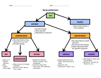 Healthy Eating: Food Flow Chart