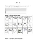 Healthy food Powerpoint + Worksheet!