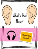 Hearing and Sound Guess that Noise