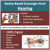 Hearing and the Human Ear – A Digital Scavenger Hunt Activity