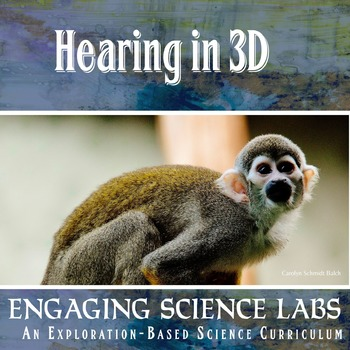 Hearing in 3D: How We Locate Sounds Using 2 Ears and a Brain—writing prompts